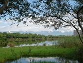 羅東林業文化園區:DSC00127.jpg