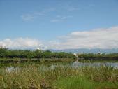 羅東林業文化園區:DSC00131.jpg