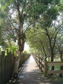 羅東林業文化園區:DSC00133.jpg
