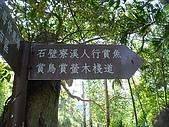 2009土城桐花節:DSC01552.jpg