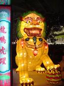 2013台北燈節在花博:DSC08868.jpg
