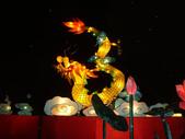 2012台北燈節~祥龍獻瑞囍洋洋:DSC07612.jpg