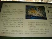 燕子口步道:DSC01997.jpg