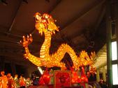 2013台北燈節在花博:DSC08873.jpg