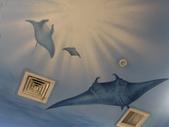 基隆-1915海洋咖啡館:DSC01899.JPG