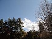 福壽山農場:DSC09879.jpg