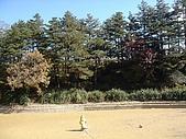 福壽山農場:DSC09880.jpg