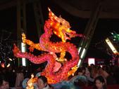 2013台北燈節在花博:DSC08892.jpg