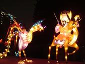 2012台北燈節~祥龍獻瑞囍洋洋:DSC07675.jpg