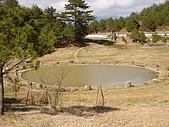 福壽山農場:DSC09905.jpg