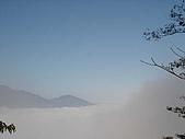武陵農場:DSC09752.jpg