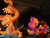 2013台北燈節在花博:DSC08902.jpg