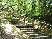 基隆Mi-Ty Tour台客行無團費旅遊:DSC02743階梯