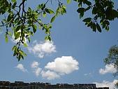 基隆Mi-Ty Tour台客行無團費旅遊:DSC02752
