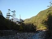 武陵農場:DSC09808七家灣溪.jpg