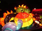 2012台北燈節~祥龍獻瑞囍洋洋:DSC07756.jpg