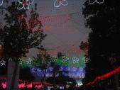 2013台灣燈會~颩在新竹縣(夜晚):DSC09573.jpg
