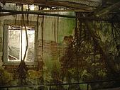 台南二日遊~古蹟篇:DSC04580樹屋內.jpg