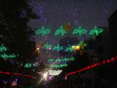 2013台灣燈會~颩在新竹縣(夜晚):DSC09577.jpg
