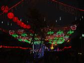 2013台灣燈會~颩在新竹縣(夜晚):DSC09579.jpg