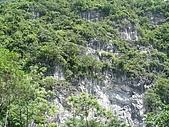 清水斷崖:DSC01885.jpg