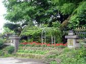 芯園民宿~我的夢中城堡:DSC00359.jpg