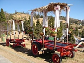 清境農場:DSC00027.jpg