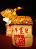 2012台北燈節~祥龍獻瑞囍洋洋:DSC07860.jpg