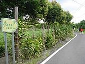 夢田信箱民宿:DSC02448夢田往這走.jpg