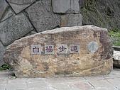 白楊步道:DSC02048.jpg