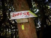 1010729塔曼山玫瑰西魔山:1010729塔曼山玫瑰西魔山021.JPG