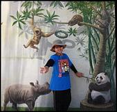 2015-07-25 木柵動物園:2015-07-25 木柵動物園008.JPG