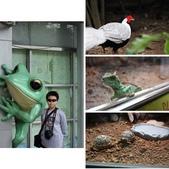 2013-11-02 動物園趴趴走:相簿封面