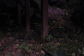 2014-04-19 螢火蟲初體驗-和美山:2014-04-19 螢火蟲-碧潭049.JPG