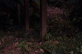 2014-04-19 螢火蟲初體驗-和美山:2014-04-19 螢火蟲-碧潭050.JPG