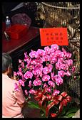 2015-06-16 文武大眾爺-日巡:2015-06-16 文武大眾老爺日巡214.JPG