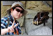 2016-03-06 動物園寫真:2016-03-06 動物園寫真053.JPG