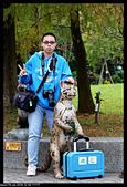 2019-12-09 動物園習拍:2019-12-09 動物園半日遊014.JPG