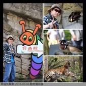 2016-03-06 動物園寫真:相簿封面