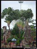 2009暑前進馬來西亞:1389983470.jpg