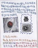 102學年度五忠石泉國小大小事:2 089.jpg