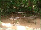 2007暑前進吳哥窟:1904998320.jpg
