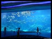 2016暑前進珠海澳門:DSC06255.jpg