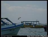 2008暑前進巴里島:1919164318.jpg