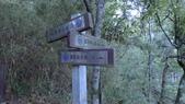 登山:郊山.中級山:P1030078.JPG