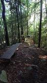 登山:百岳:P1050628.JPG