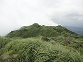 登山:百岳:110626_a3.jpg
