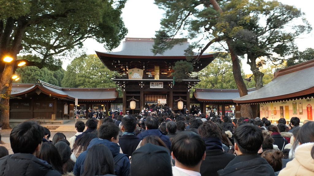 日本 箱根 日光 自由行:P1000749.JPG
