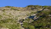 登山:百岳:P1030318.JPG