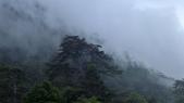 登山:百岳:P1050096.JPG